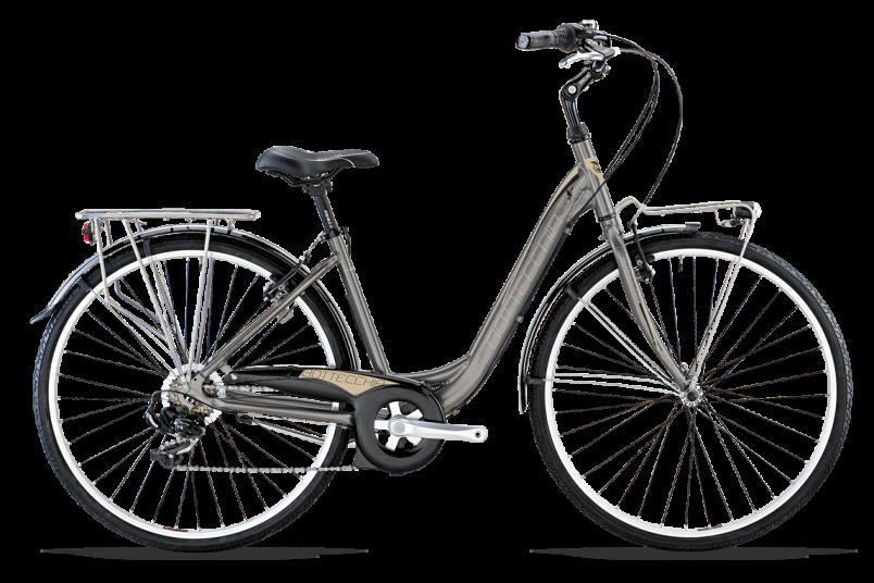 bici Bottecchia