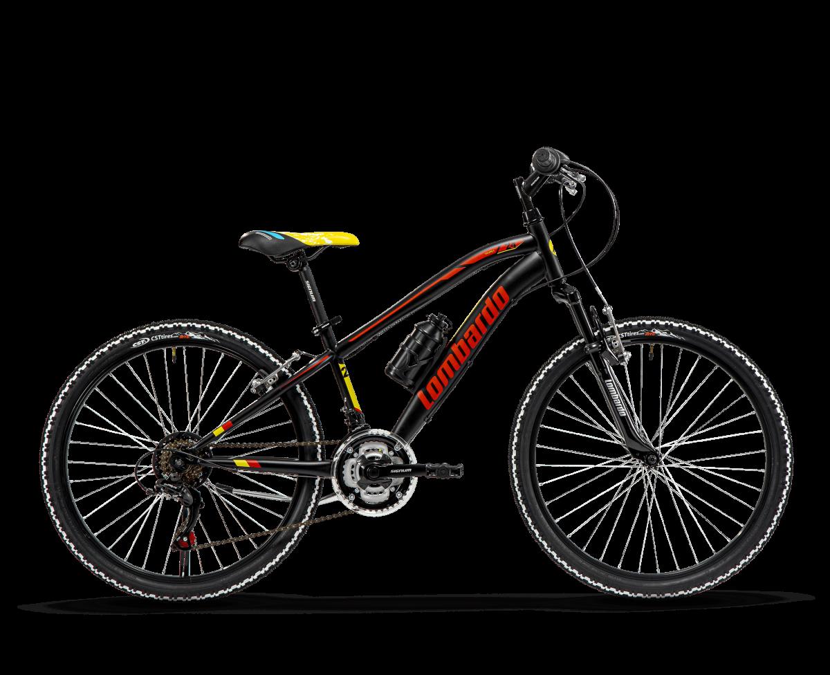 bicicletta Lombardo